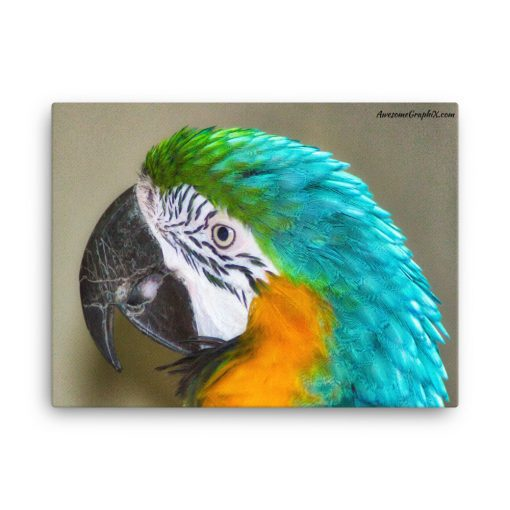 Blue & Yellow Macaw Parrot - 18 x 24 Canvas - AwesomeGraphix.com - T-Shirts, Caps, Mugs, Baby Onesies, Wall Art and more!